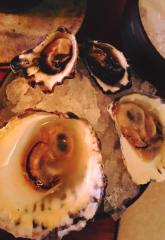 Olympia and Big Flat Oysters