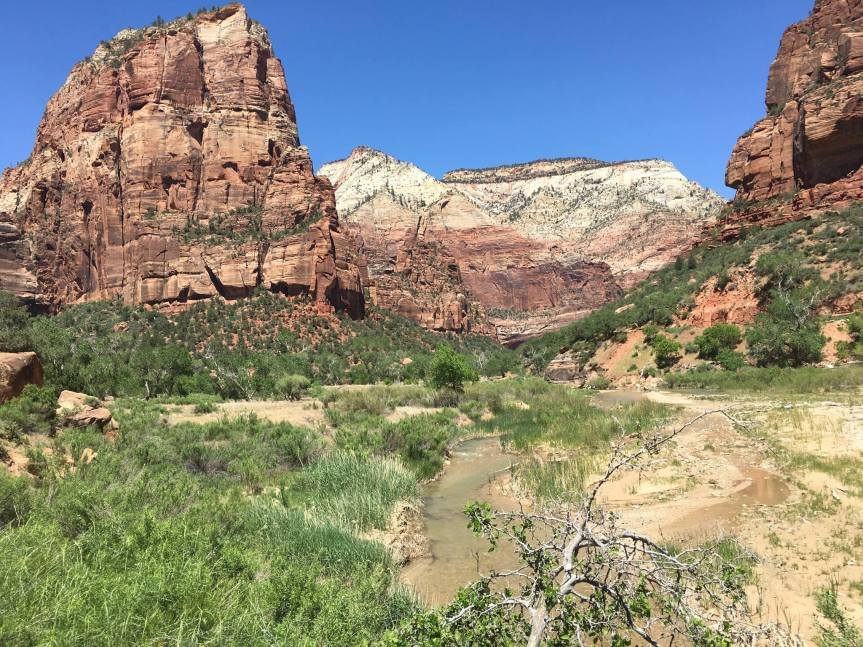 Zion National Park in a Day