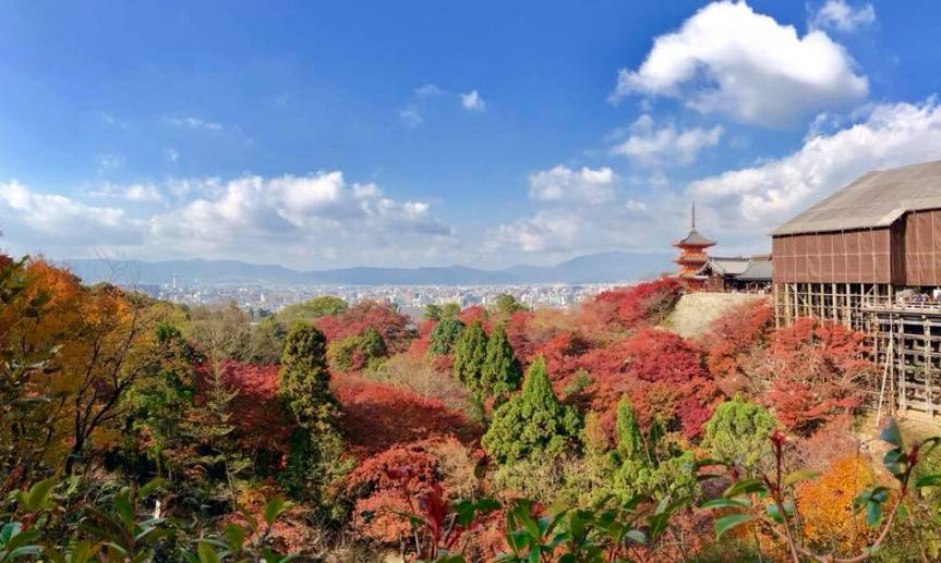 Foliage Season in Kyoto – Day 2