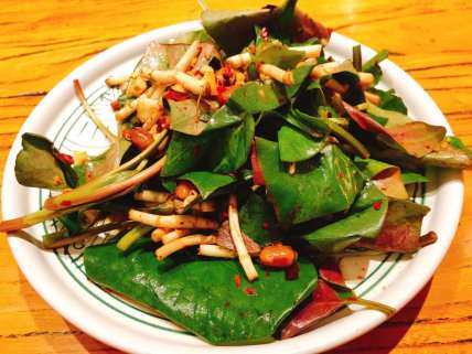 Houttuynia salad - An edible rhizome with a fresh, spicy and peppery flavour